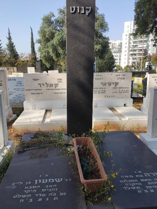 שמעון קנוט (שורה ז'- 17) ✎