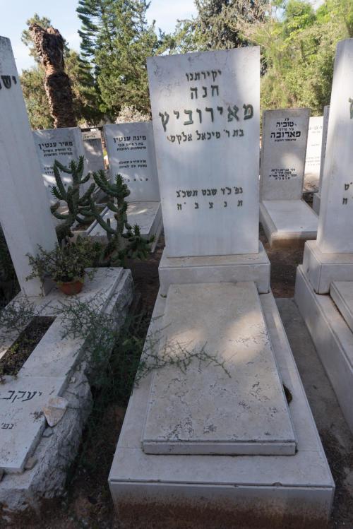 חנה מאירוביץ (שורה יב'- 4)