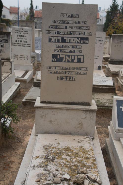 אסתר רחל דניאלי (שורה טו'- 45)