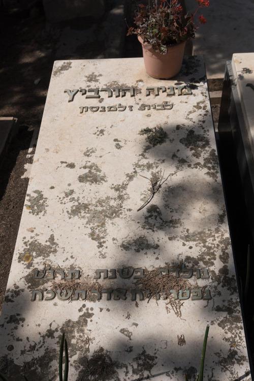 מניה הורביץ (שורה יז'- 39)