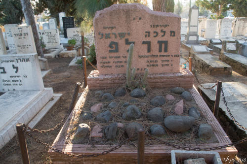 ישראל חרל``פ (שורה כ'- 49)