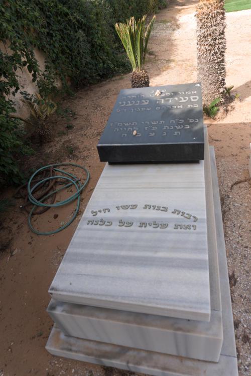 סעידה צנעני (שורה לא'-71)
