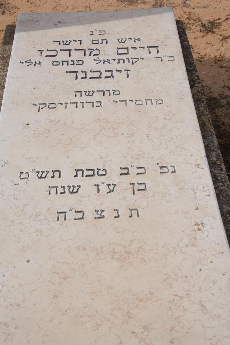 חיים מרדכי זיגבנד (שורה ג-37) ✎