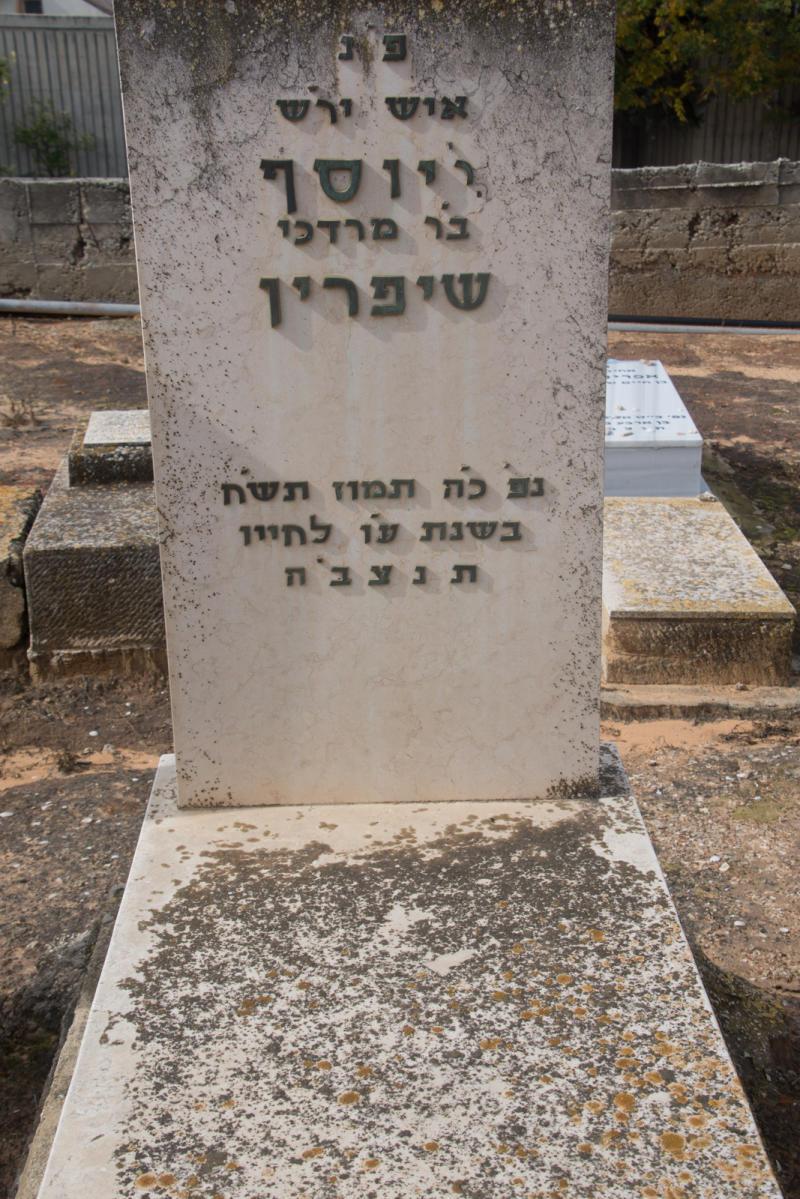 יוסף שיפרין (שורה ג'-42)