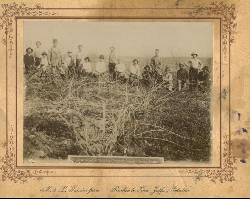 הזמירה בכרמי המושבה 1898