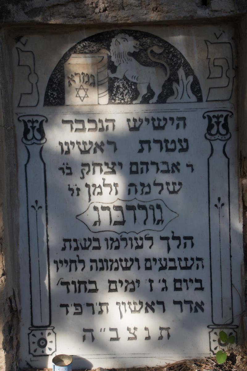 אברהם גולדברג