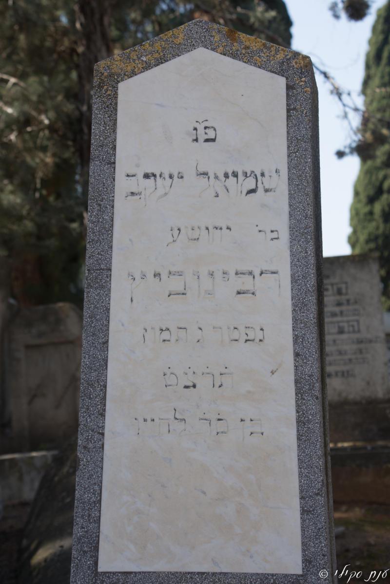 שמואל רבינוביץ