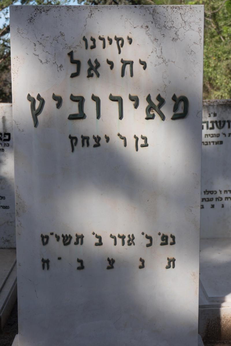 יחיאל מאירוביץ