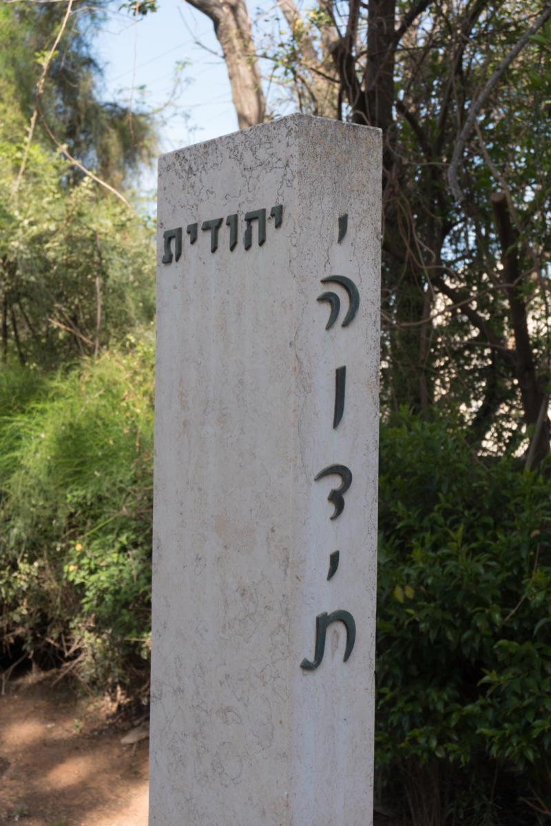 יהודית ז