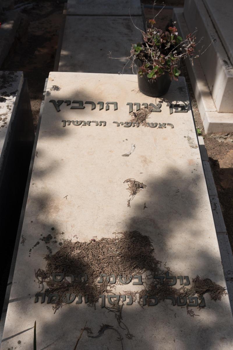 בן ציון הורוביץ