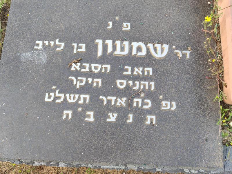 שמעון קנוט